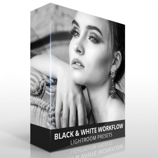 Black white workflow presets for Lightroom